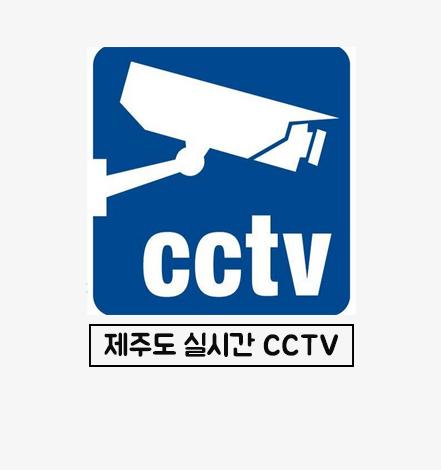 제주 실시간 cctv.jpg